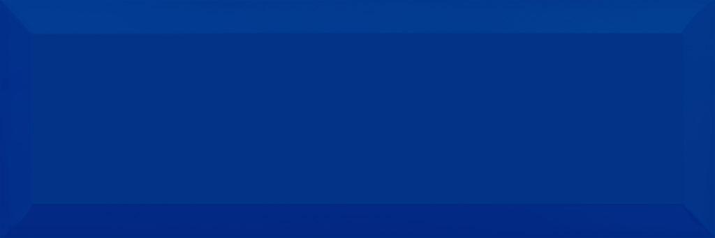 Tellaro cobalt wall 01 100х300